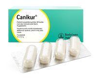 CANIKUR TABL 12 kpl